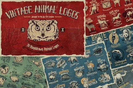 50 insignias con Logo de animales Vintage.