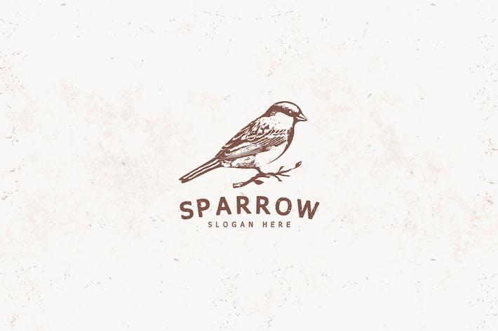 Thumbnail for Sparrow Bird Logo