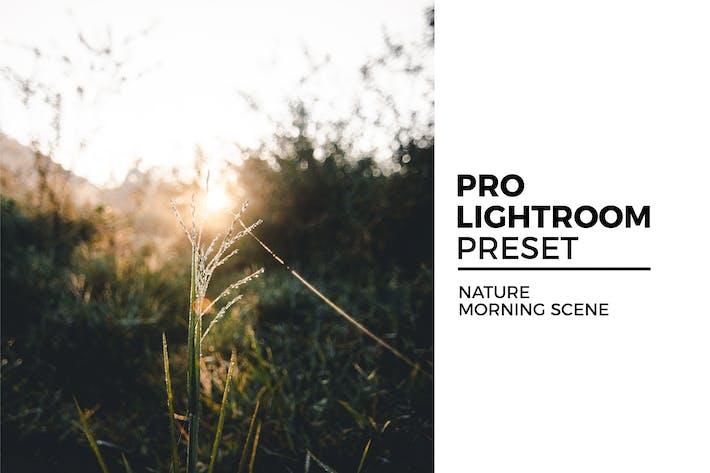 Thumbnail for Nature Morning Scene Preset