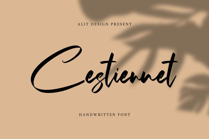 Thumbnail for El Cestiennet