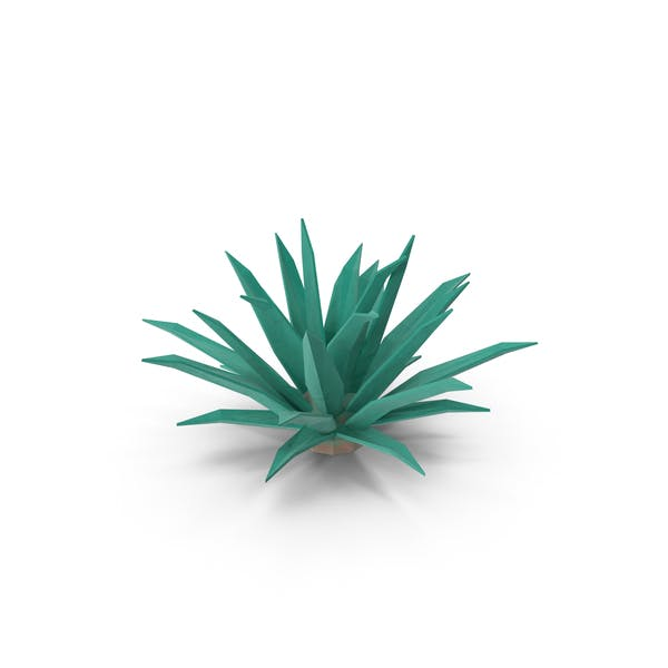 Thumbnail for Low Poly Cactus