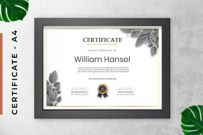 Thumbnail for Сертификат серого листа/Шаблон диплома