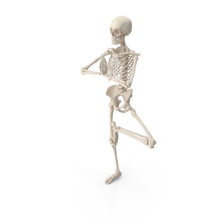 Skeleton Tree Pose