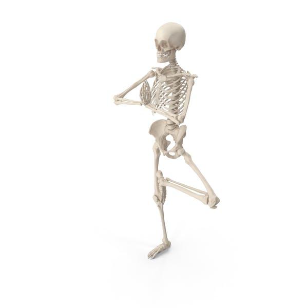 Thumbnail for Skeleton Tree Pose