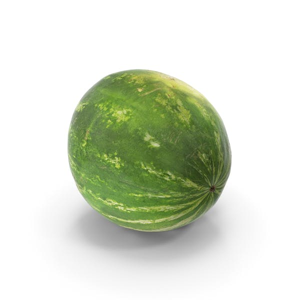Watermelon Whole Realistic