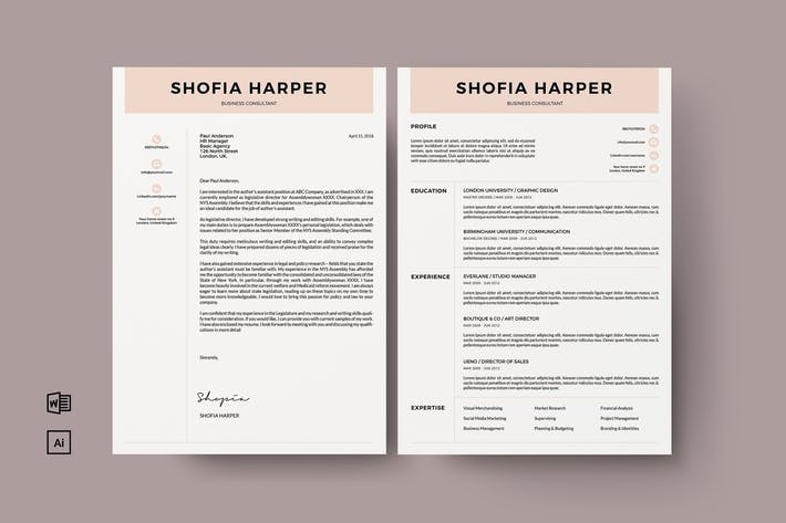 3 Page Resume / CV Template