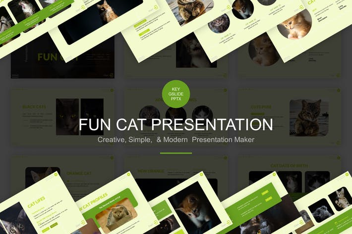 Thumbnail for Fun Cat Шаблон презентации