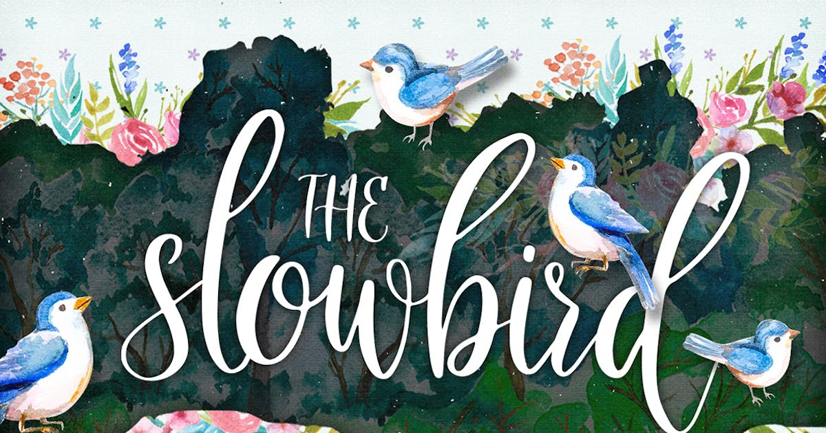 Download The Slowbird - Typeface by Layerform