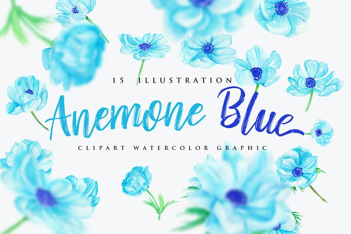 Cover Image For 15 Watercolor Anemone Blue Flower Illustration