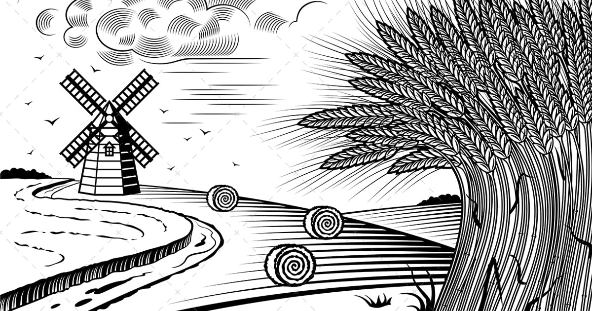 Download Wheat Fields Landscape Black And White by iatsun
