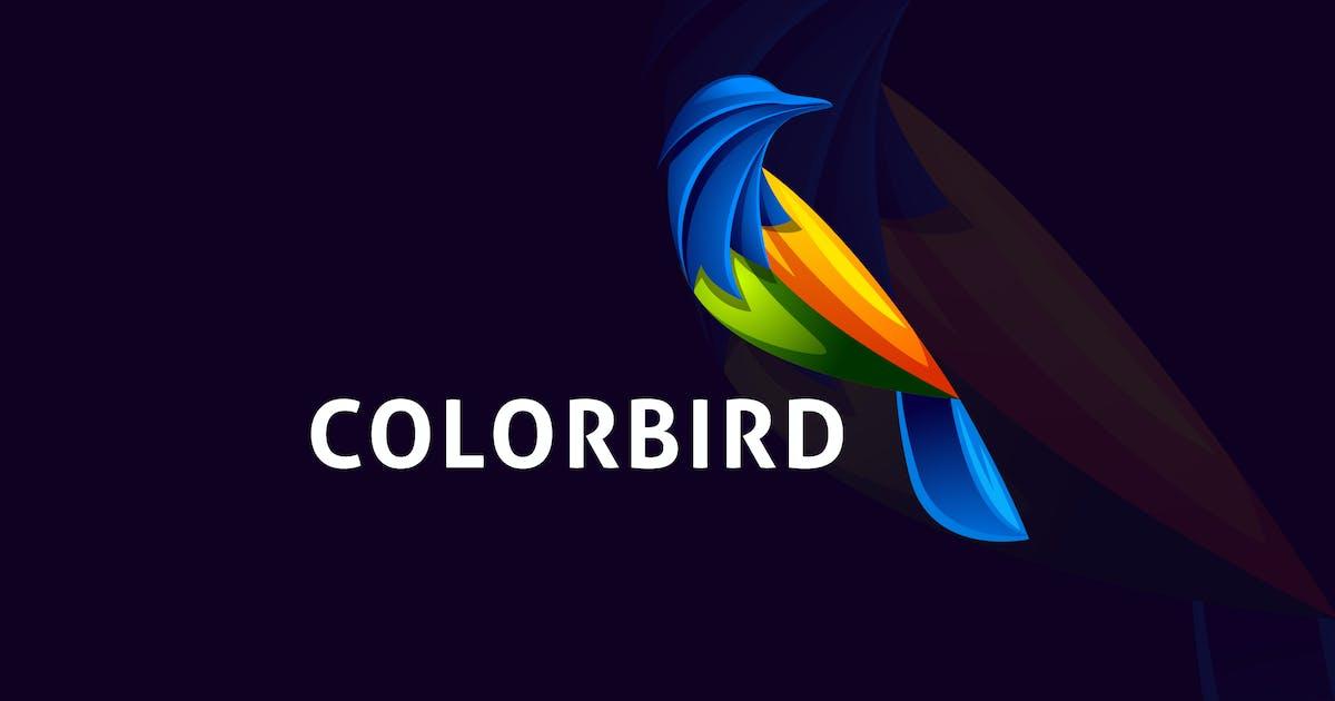 Download Modern Colorful Bird Logo by Suhandi