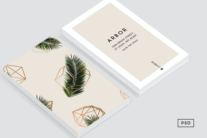 Thumbnail for Palm + Geometry Business Card