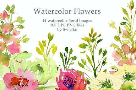 Aquarell Landblumen