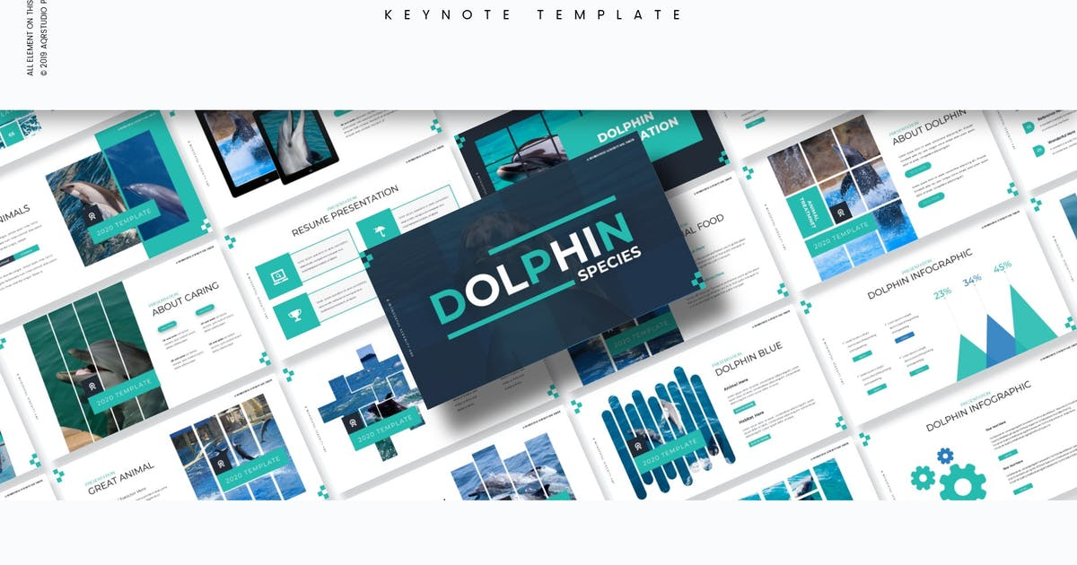 Download Dolphine - Keynote Template by aqrstudio