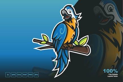 Parrot Cartoon Template