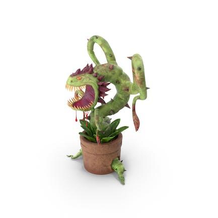 Carnivorous Flytrap Plant