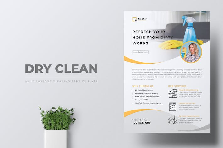 Thumbnail for DRYCLEAN Cleaning Services Flyer