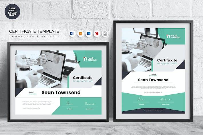 Professional Certificate Template Vol.31