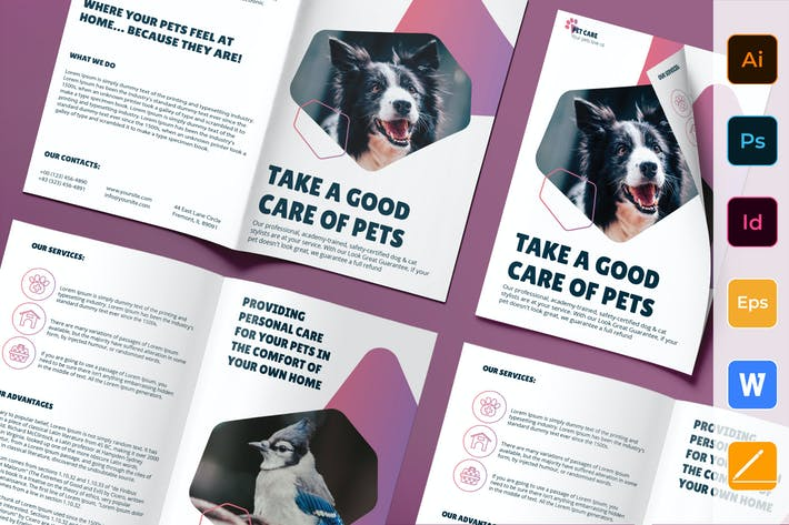 Pet Grooming Care Bifold Brochure