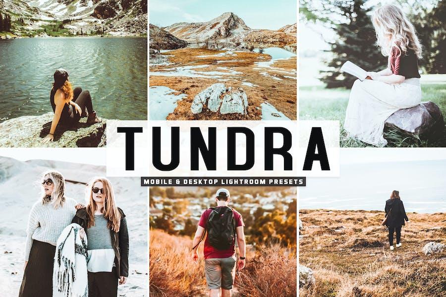 Tundra Mobile & Desktop Lightroom Presets