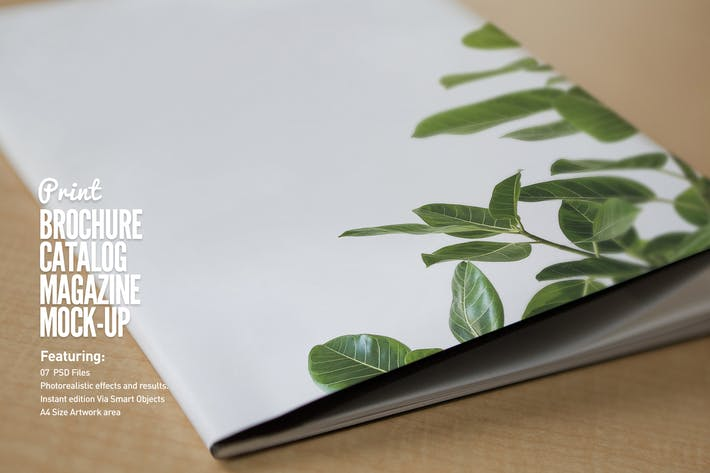 Thumbnail for Realistic Brochure Mockups