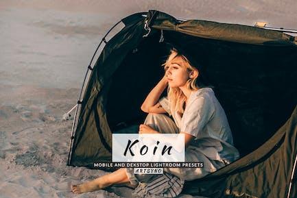 Koin Lightroom Presets Dekstop and Mobile