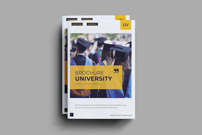Thumbnail for University Brochure