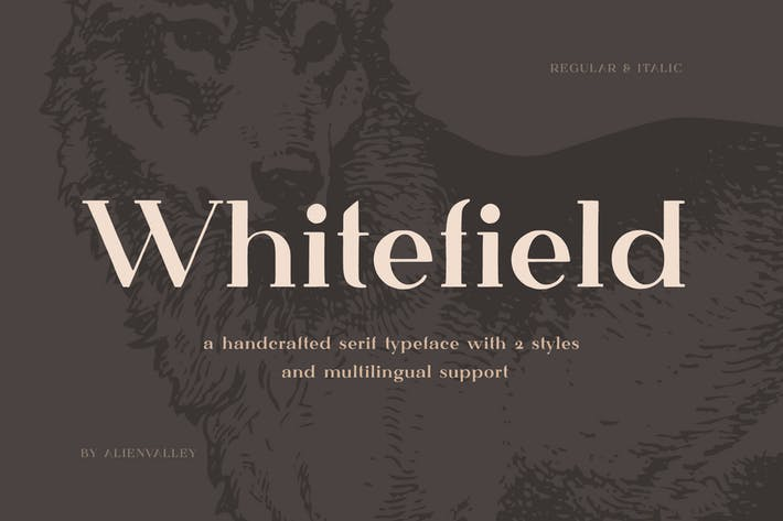 Thumbnail for Whitefield - Handcrafted Serif