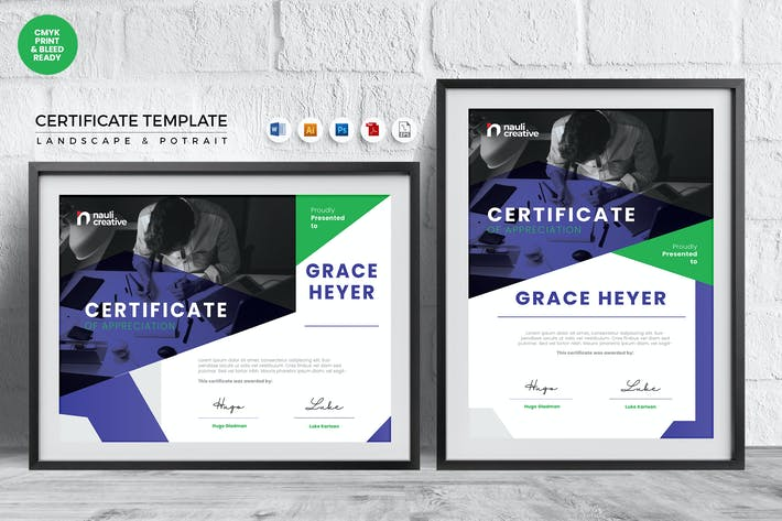 Thumbnail for Professional Certificate Template Vol.42