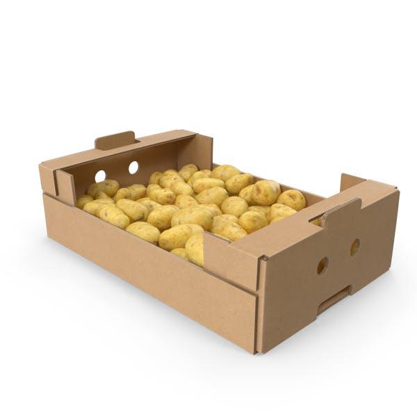 Cardboard Box with Potatoes