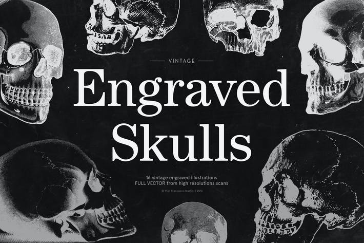 Thumbnail for Engraved Skulls Illustrations