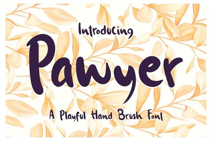 Thumbnail for Pawyer - Una fuente de cepillo de mano juguetón