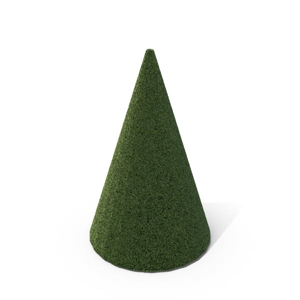 Thumbnail for Topiary Cone