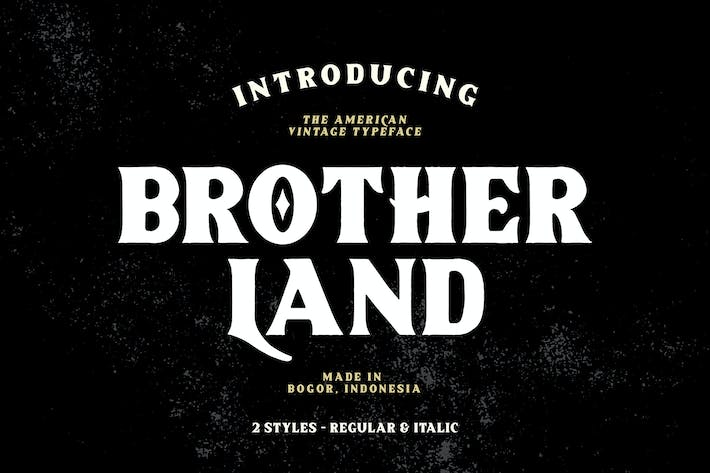 Cover Image For Brotherland