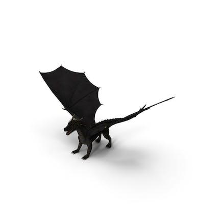 Schwarzer Mythischer Drache