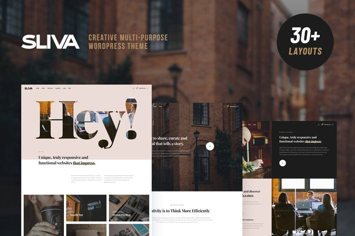 Thumbnail for Sliva - Responsive Multi-Purpose Theme