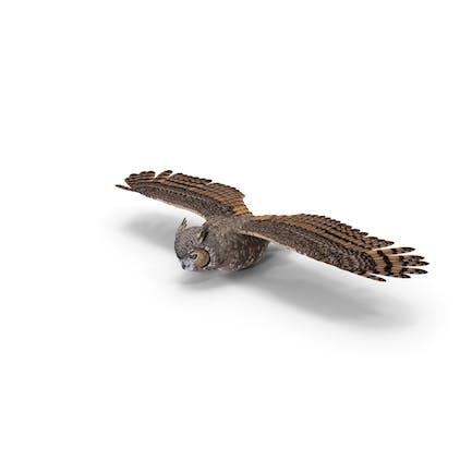 Fliegende Pose mit großer gehörnter Eule