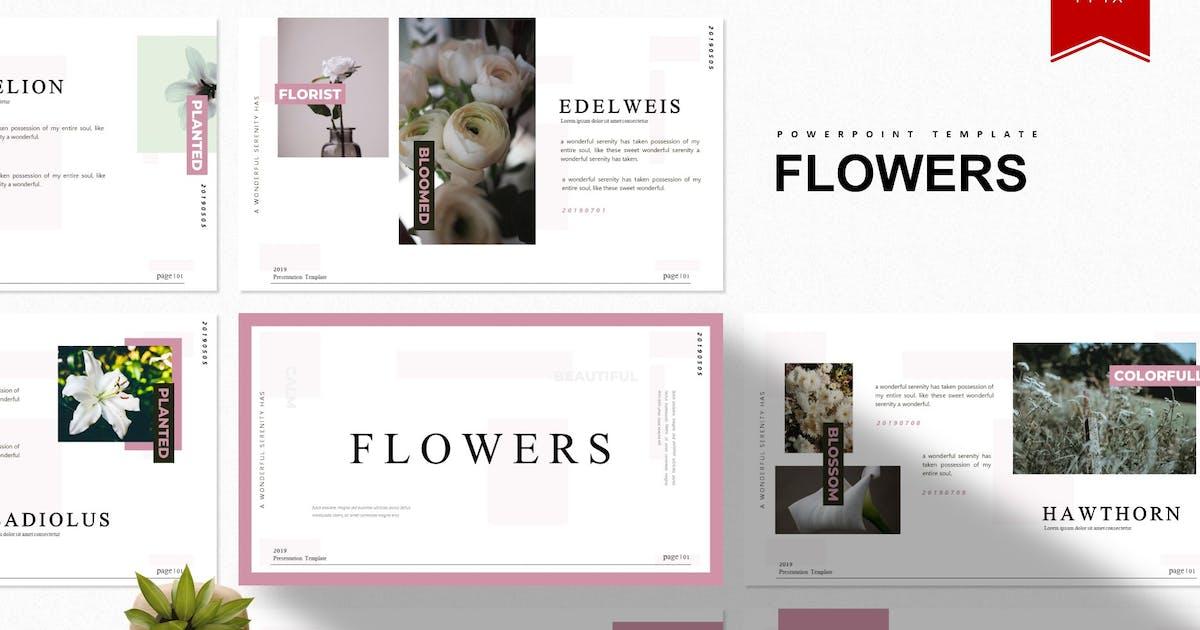 Download Flowers | Powerpoint Template by Vunira