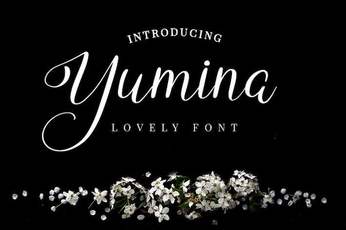 Thumbnail for Yumina - Script Font