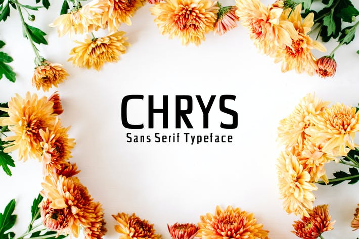 Cover Image For Chrys Sans Serif Font Family Pack