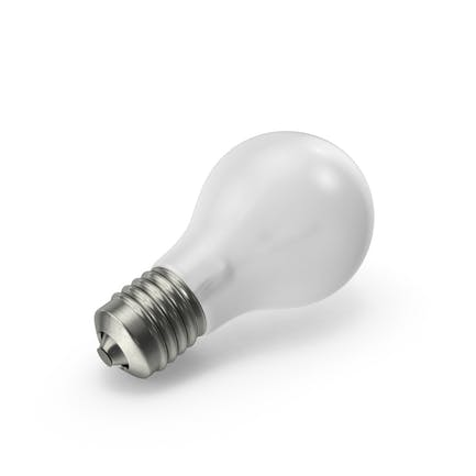 Matte Light Bulb