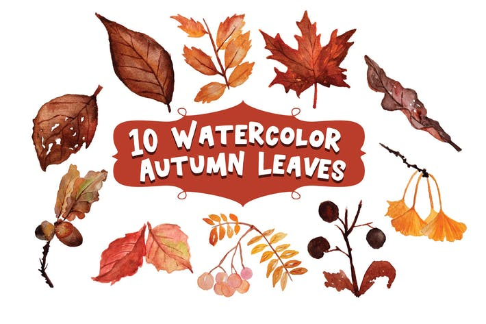Thumbnail for 10 Watercolor Autumn Leaves