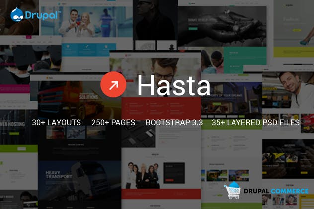 Hasta - Multipurpose Responsive Commerce Theme
