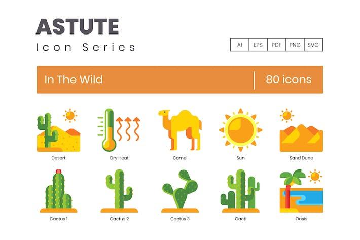 80 In der wilden Icons - Astute Series