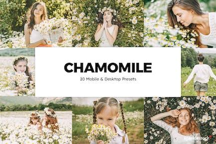 20 Chamomile Lightroom Presets & LUTs