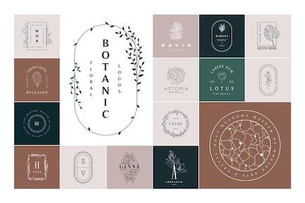 50 Botanical & Floral Logos