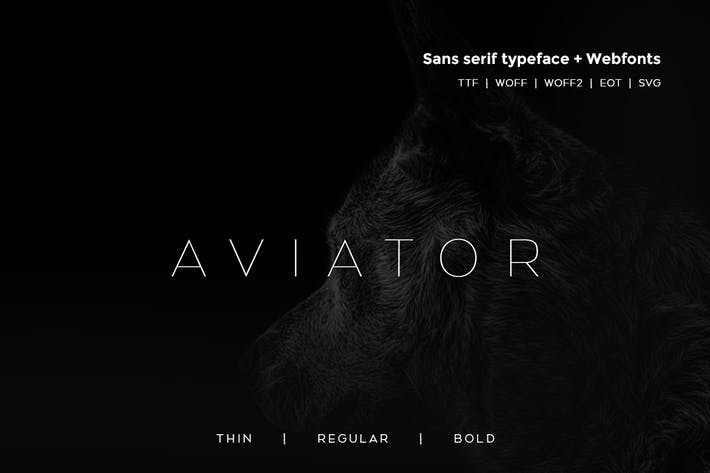 Thumbnail for Aviator - Modern Typeface + WebFont