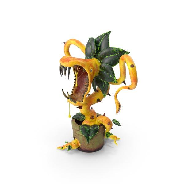 Thumbnail for Carnivorous Plant Yellow