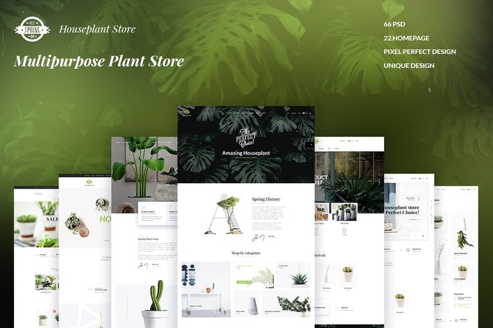 Thumbnail for SPRING - Multipurpose Plant Store