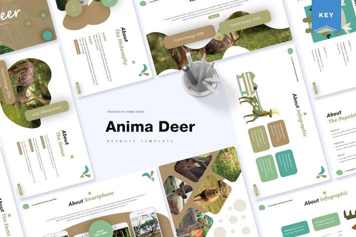 Thumbnail for Anima Deer | Keynote Template
